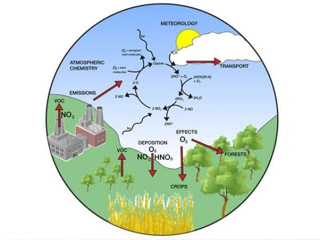effects of volatile organic compounds Antifungal effects of volatile organic compounds from the endophytic fungus cryptosporiopsis ericae cc-hg-7 isolated from coptis chinensis franch.