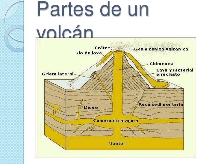 Volcanes for Partes de un vivero forestal