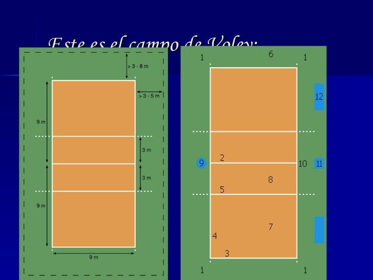 T cnica del voleibol for Que es tecnica de oficina wikipedia