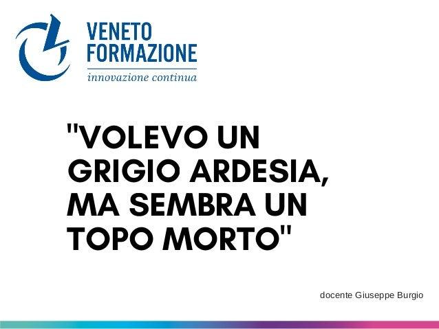 """""""VOLEVO UN GRIGIO ARDESIA, MA SEMBRA UN TOPO MORTO"""" docente Giuseppe Burgio"""