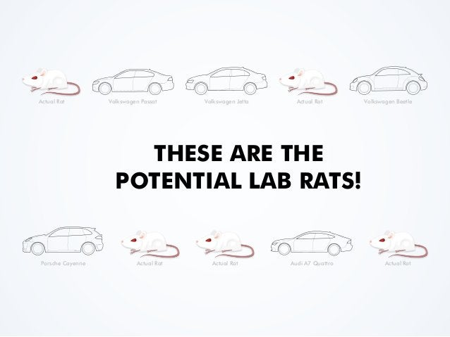 THESE ARE THE POTENTIAL LAB RATS! Volkswagen Passat Volkswagen Jetta Volkswagen BeetleActual Rat Actual Rat Porsche Cayenn...