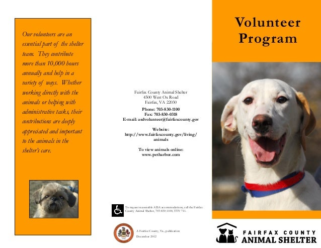 Fairfax county animal shelter volunteer program brochure for Volunteer brochure template