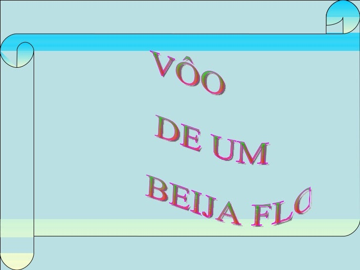 VÔO DE UM BEIJA FLOR