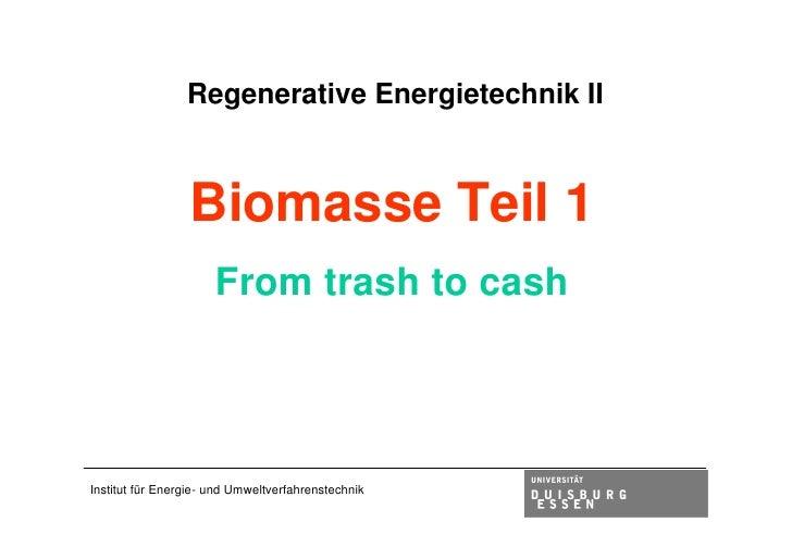Vorlesung 2009 biomasse1