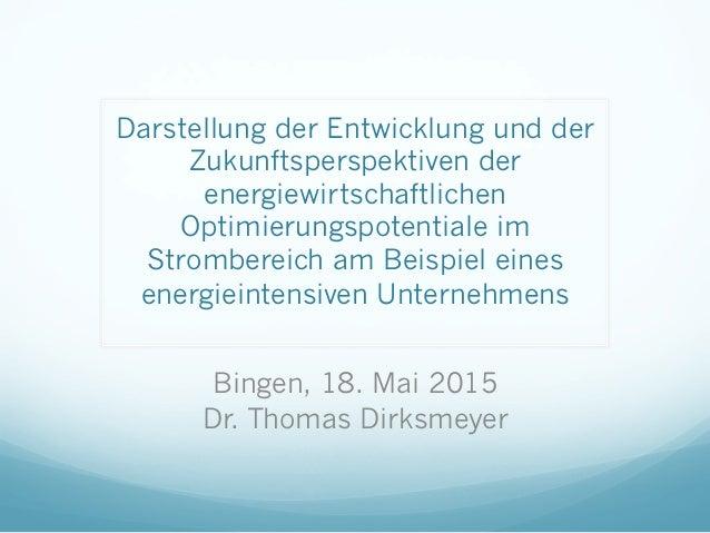 Darstellung der Entwicklung und der Zukunftsperspektiven der energiewirtschaftlichen Optimierungspotentiale im Strombereic...