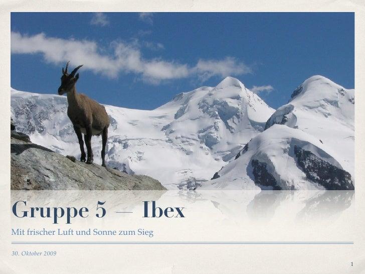 Gruppe 5 — Ibex Mit frischer Luft und Sonne zum Sieg  30. Oktober 2009                                        1