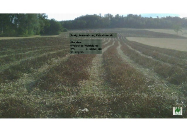 Praktische Erfahrung bei Umstellung auf ökologischen Landbau