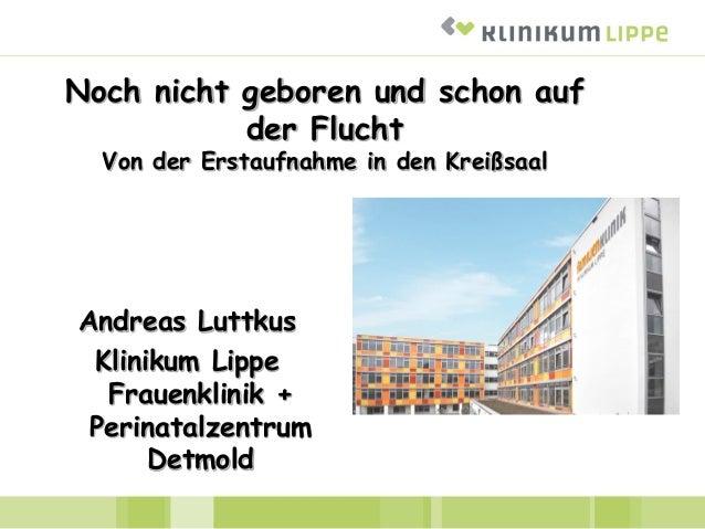 Noch nicht geboren und schon auf der Flucht Von der Erstaufnahme in den Kreißsaal Andreas Luttkus Klinikum Lippe Frauenkli...
