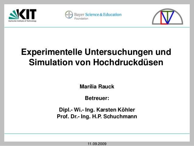 Experimentelle Untersuchungen und Simulation von Hochdruckdüsen Marília Rauck  Betreuer: Dipl.- Wi.- Ing. Karsten Köhler P...