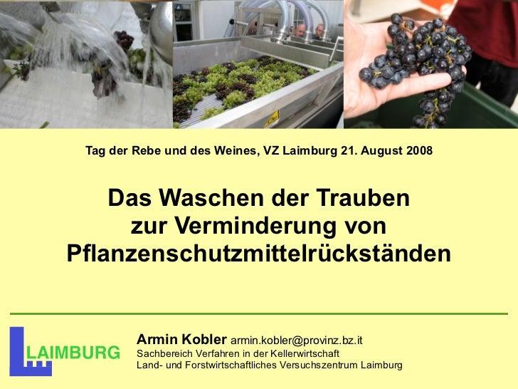Tag der Rebe und des Weines, VZ Laimburg 21. August 2008    Das Waschen der Trauben     zur Verminderung vonPflanzenschutz...