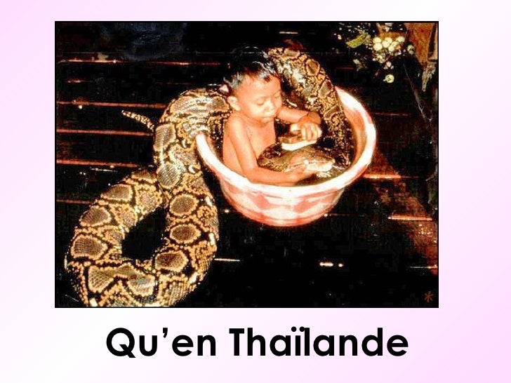 Qu'en Thaïlande