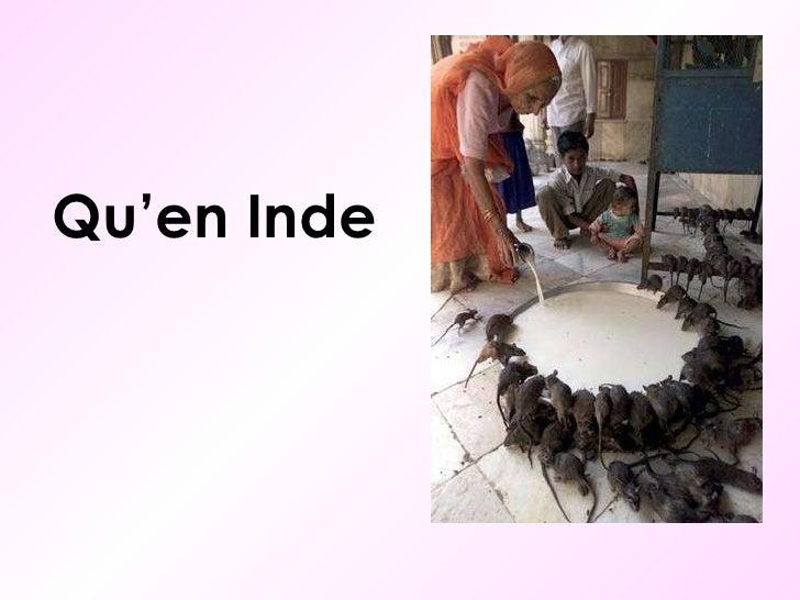 Qu'en Inde