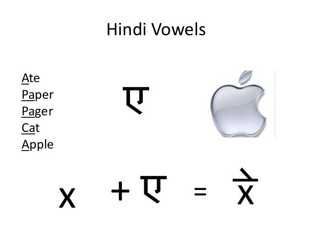 cat in hindi language