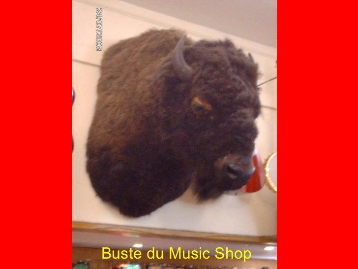 Buste du Music Shop