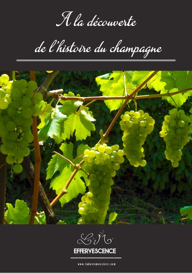 www.ludovicmessiers.com  A la découverte  de l'histoire du champagneEFFERVESCENCE