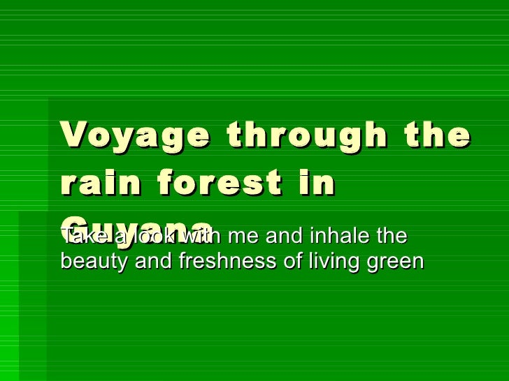 Voyage through the rain forest in Guyana Take a look with me and inhale the beauty and freshness of living green