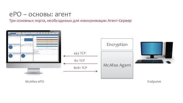 Три основных порта, необходимых для коммуникации Агент-Сервер ePO – основы: агент McAfee ePO McAfee Agent Encryption Endpo...
