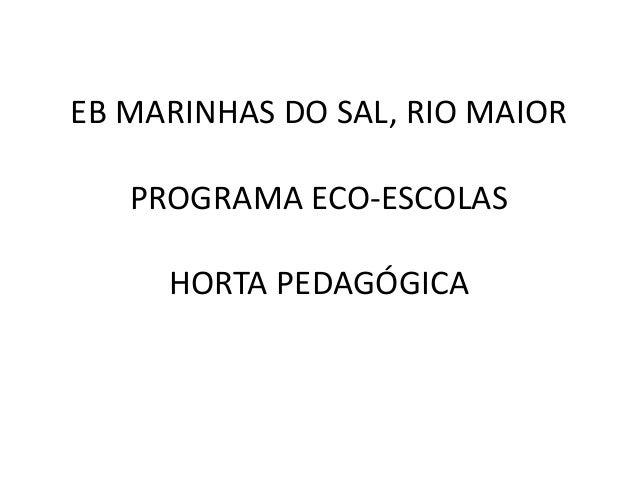 EB MARINHAS DO SAL, RIO MAIOR PROGRAMA ECO-ESCOLAS HORTA PEDAGÓGICA