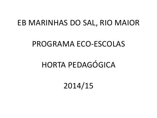 EB MARINHAS DO SAL, RIO MAIOR PROGRAMA ECO-ESCOLAS HORTA PEDAGÓGICA 2014/15