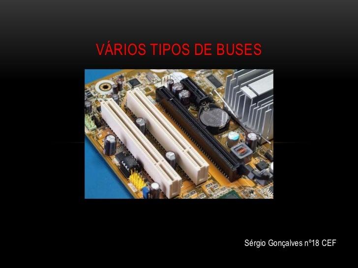 VÁRIOS TIPOS DE BUSES                  Sérgio Gonçalves nº18 CEF