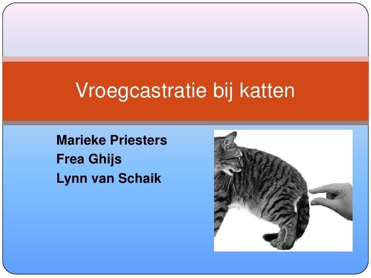 Marieke Priesters<br />FreaGhijs<br />Lynn van Schaik<br />Vroegcastratie bij katten<br />
