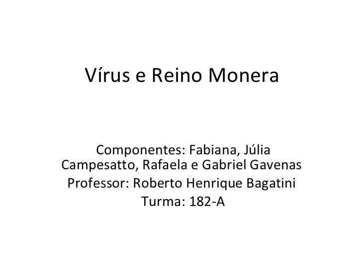Vírus e Reino Monera Componentes: Fabiana, Júlia Campesatto, Rafaela e Gabriel Gavenas  Professor: Roberto Henrique Bagati...