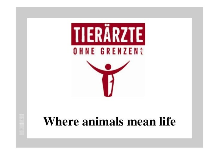 Where animals mean life