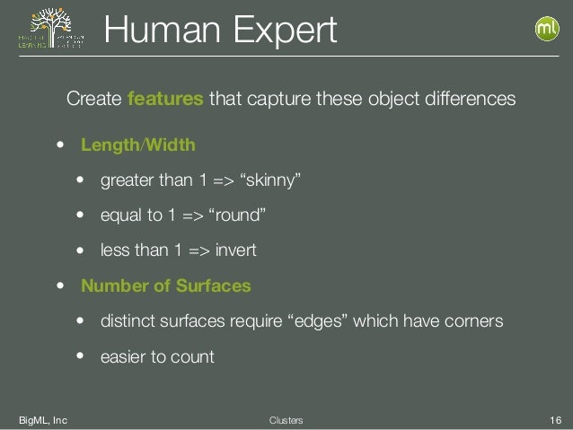 """BigML, Inc 16Clusters Human Expert • Length/Width • greater than 1 => """"skinny"""" • equal to 1 => """"round"""" • less than 1 => in..."""