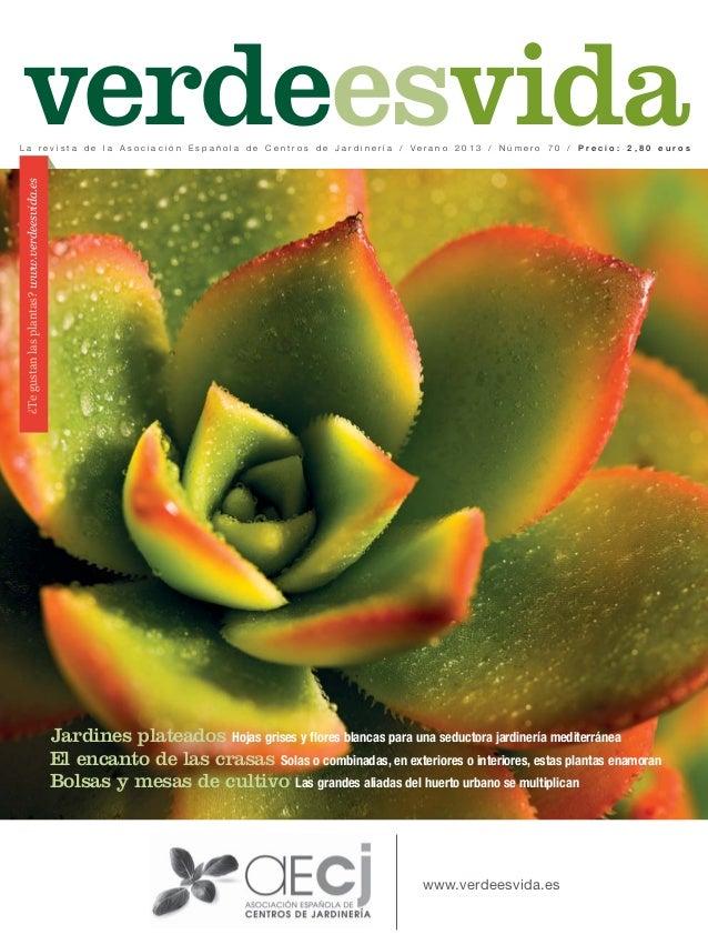 ¿Tegustanlasplantas?www.verdeesvida.es www.verdeesvida.es verdeesvidaL a r e v i s t a d e l a A s o c i a c i ó n E s p a...