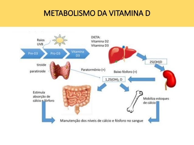 Aprender todo acerca de medicamentos para acelerar el metabolismo