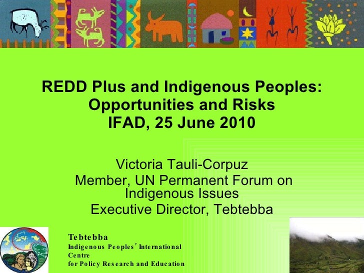 REDD Plus and Indigenous Peoples: Opportunities and Risks IFAD, 25 June 2010 Victoria Tauli-Corpuz Member, UN Permanent Fo...