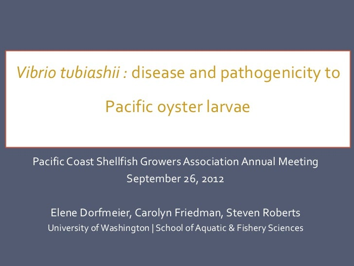 Vibrio tubiashii : disease and pathogenicity to                   Pacific oyster larvae  Pacific Coast Shellfish Growers A...