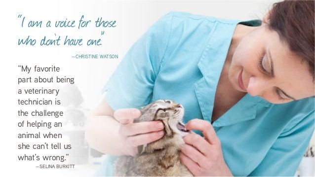 Vet Tech Quotes Amusing Veterinary Technicians Love Their Jobs