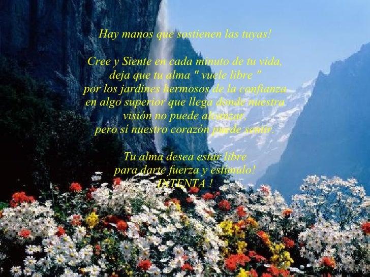 """Hay manos que sostienen las tuyas! Cree y Siente en cada minuto de tu vida, deja que tu alma """" vuele libre """" por..."""