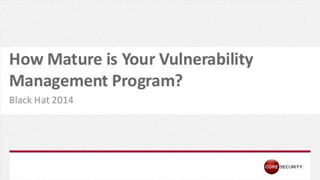 Vulnerabilty Maturity Model - Core Security