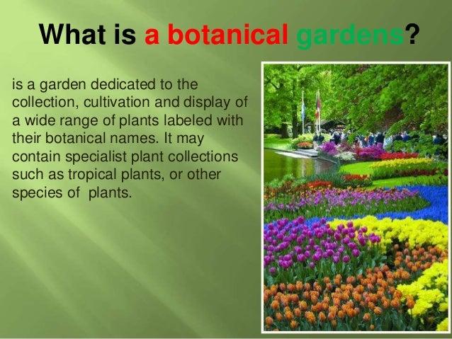 Botanical Gardens BY HAIDR MSAHIR; 2. What Is ...
