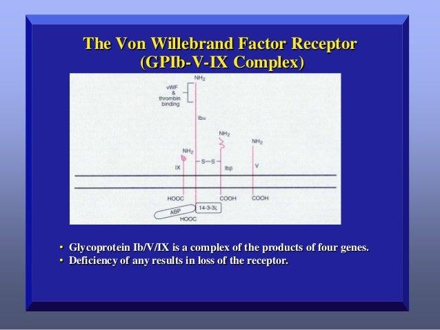 Von Willebrand Disease: Overview of Common Types   Decrease in vWF function (Ristocetin cofactor) and antigen. – Abnormal...