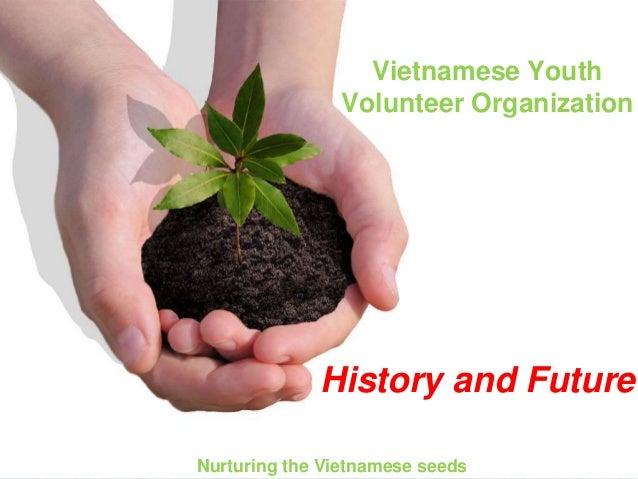 Vietnamese Youth Volunteer Organization Nurturing the Vietnamese seeds History and Future