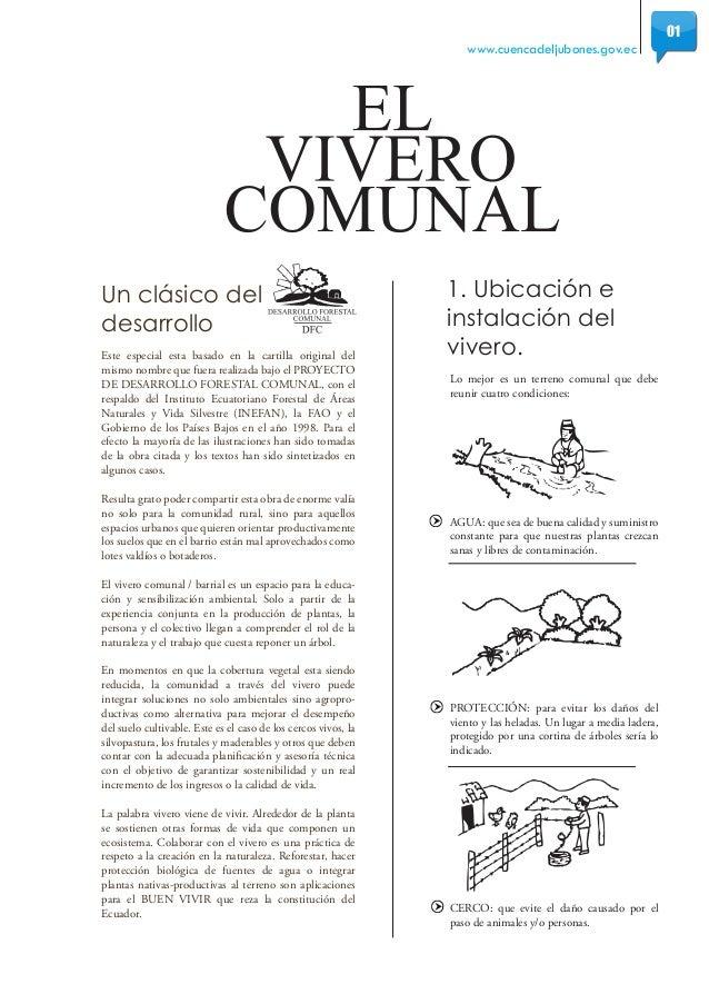 W vivero comunal for Tipos de viveros forestales
