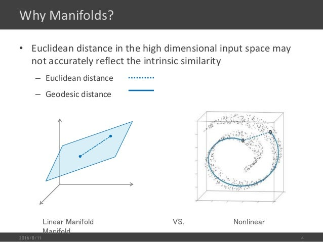 manifold and Euclidean distantce invalid