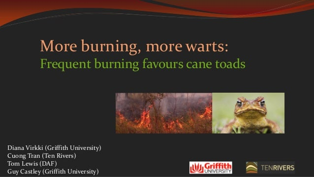 More burning, more warts: Frequent burning favours cane toads Diana Virkki (Griffith University) Cuong Tran (Ten Rivers) T...