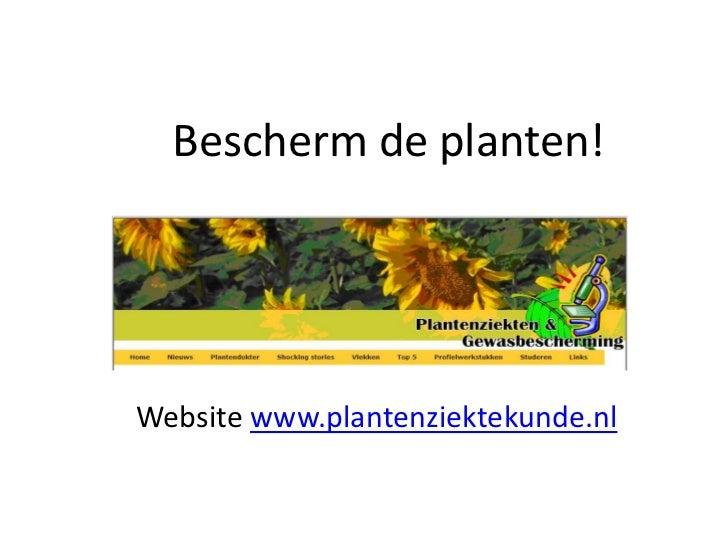 Bescherm de planten!Website www.plantenziektekunde.nl