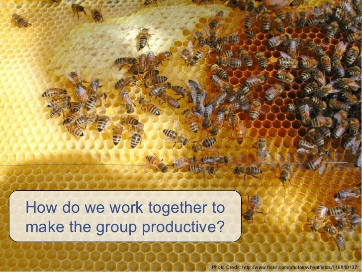How do we work together to make the group productive? Photo Credit: http://www.flickr.com/photos/wheatfields/116810137