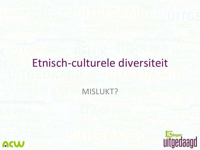 Etnisch-culturele diversiteit MISLUKT?