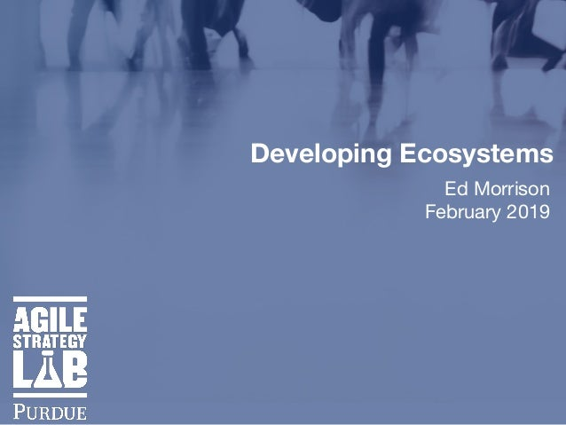 Developing Ecosystems Ed Morrison  February 2019