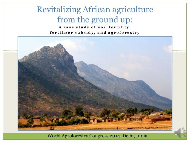 Revitalizing African agriculture from the ground up: A case study of soil fertility, fertilizer subsidy, and agroforestry ...