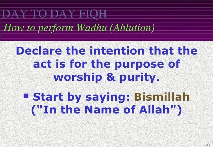 DAY TO DAY FIQH   How to perform Wadhu (Ablution) <ul><li>Declare the intention that the act is for the purpose of worship...