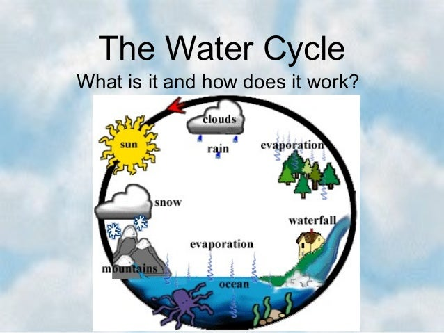 The Water Cycle What is it and how does it work?