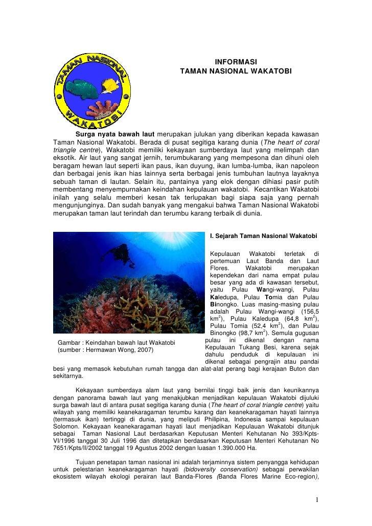 INFORMASI                                               TAMAN NASIONAL WAKATOBI             Surga nyata bawah laut merupak...