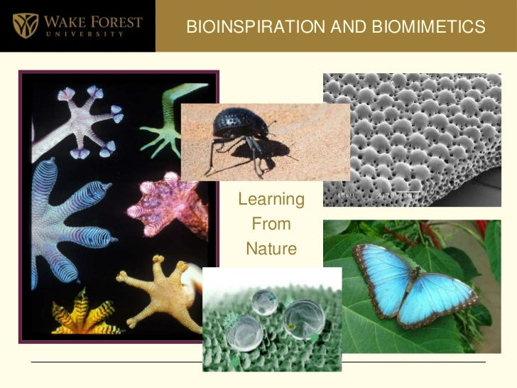 BIOINSPIRATION AND BIOMIMETICS<br />Learning <br />From<br />Nature<br />